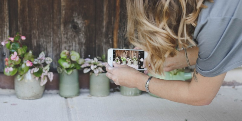 Taking photo of plants with smartphone
